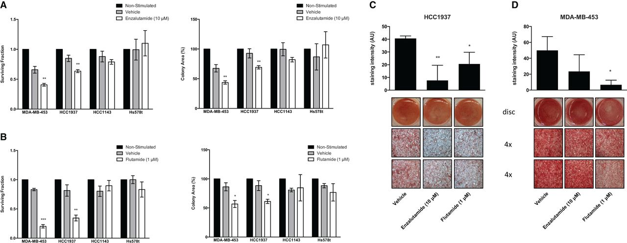Preclinical evaluation of the AR inhibitor enzalutamide in